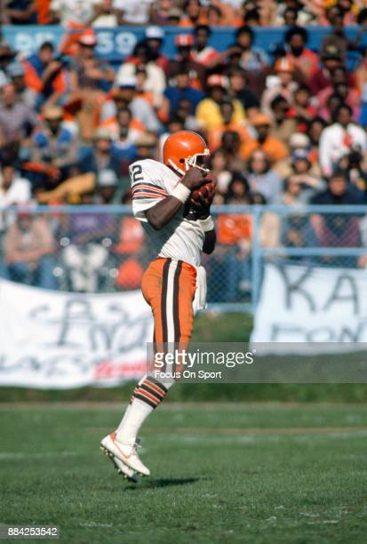 Tight End Ozzie Newsome of the Cleveland Browns catches a pass against the Atlanta Falcons during an NFL football game September 27 1981 at Cleveland...