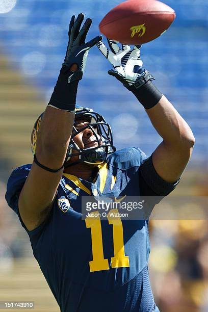 Tight end Richard Rodgers of the California Golden Bears warms up before the game against the Southern Utah Thunderbirds at Memorial Stadium on...