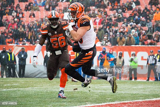 Tight end Tyler Eifert catches a touchdown pass from quarterback Andy Dalton of the Cincinnati Bengals while under pressure from inside linebacker...