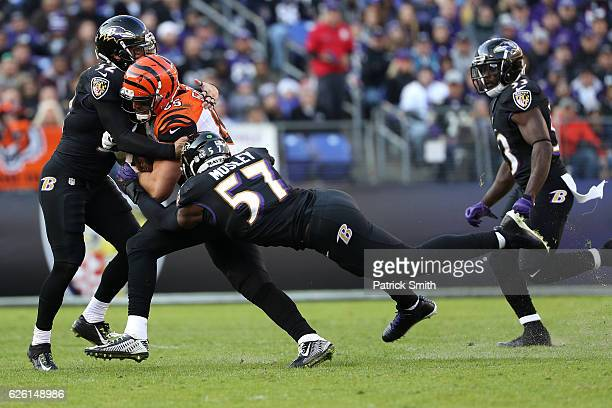 Tight end Tyler Eifert of the Cincinnati Bengals is tackled by inside linebacker CJ Mosley and strong safety Eric Weddle of the Baltimore Ravens in...