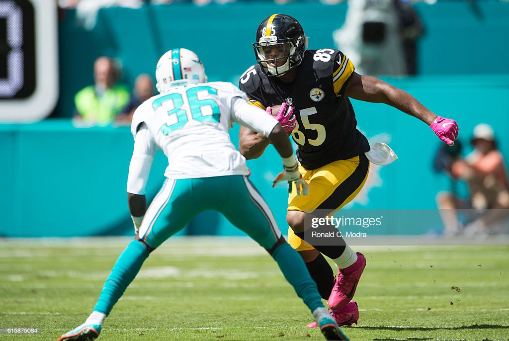 Pittsburgh Steelers v Miami Dolphins : News Photo