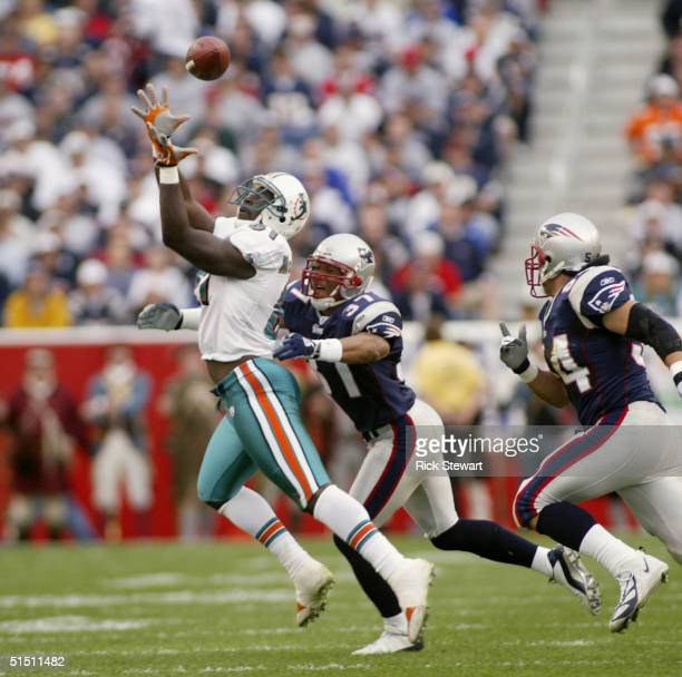 Tight ent Randy McMichael of the Miami Dolphins attempts to catch a ball while being pressured by safety Rodney Harrison and linebacker Tedy Bruschi...