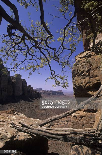 Tigray landscapes in Tigray Ethiopia On the way to Abuna Yemata Guh an exquisite rock church situated in the cliffs of this photo