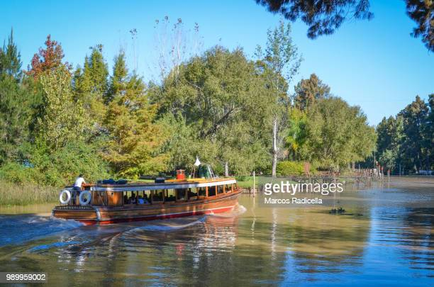 tigre, delta, buenos aires, argentina - radicella stock photos and pictures