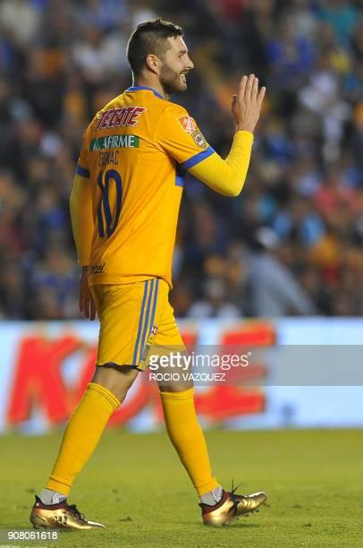 Tigres' French player Andre Gignac gestures during the Mexican Clausura football tournament match against Queretaro at La Corregidora stadium in...