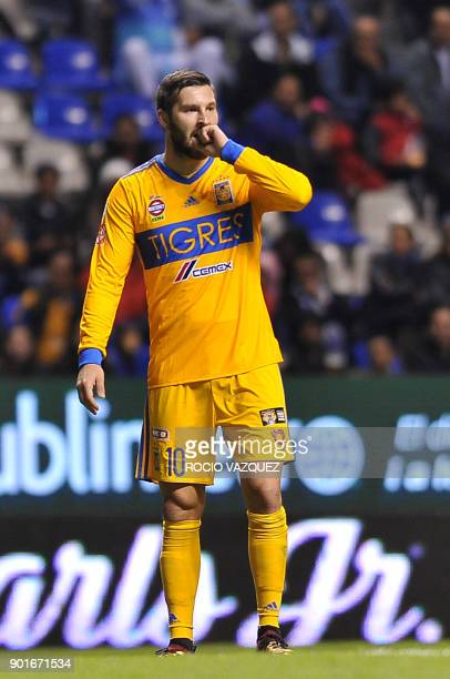 Tigres' French player Andre Gignac gestures during their Mexican Clausura tournament football match against Puebla at Cuauhtemoc stadium on January...