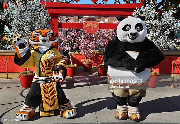 Tigress and Po from the 'Kung Fu Panda' film series pose at Universal Studios Hollywood on January 25 2017 in Universal City California