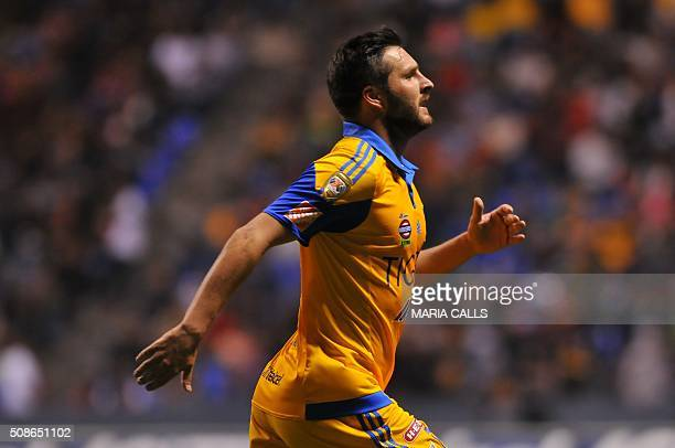 Tigres's forward Andre Pierre Gignac celebrates after scoring a goal against Chiapas during their Mexican Clausura 2016 Tournament footbal match at...