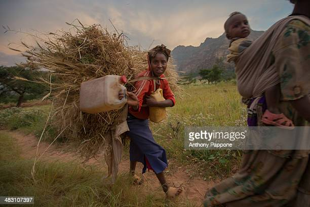 Tigrinya farmers to return from the fields, gheralta area, Tigray,ethiopia
