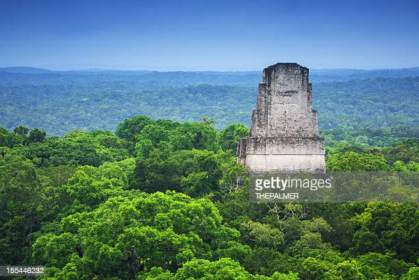 tikal guatemala - guatemala stock pictures, royalty-free photos & images