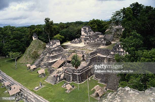 tikal - latin american civilizations stock photos and pictures