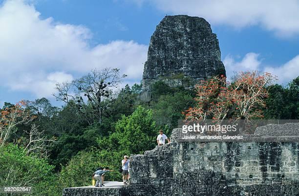 Tikal. Temple V. Tourists