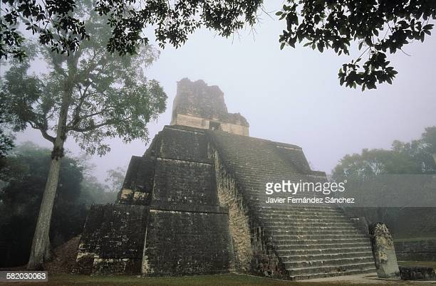 Tikal. The temple of the masks in the fog.