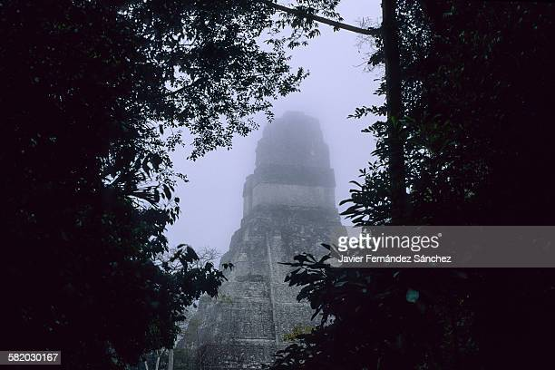 Tikal.Temple between the rainforest and fog.