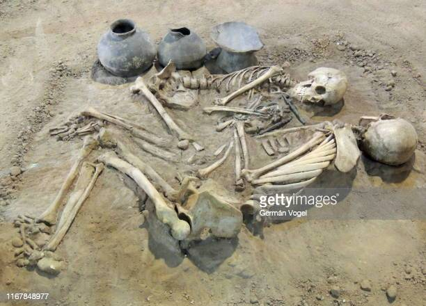 til death do us part: ancient archaeological excavation couple of human skeletons and pottery in iran - human skeleton stock pictures, royalty-free photos & images