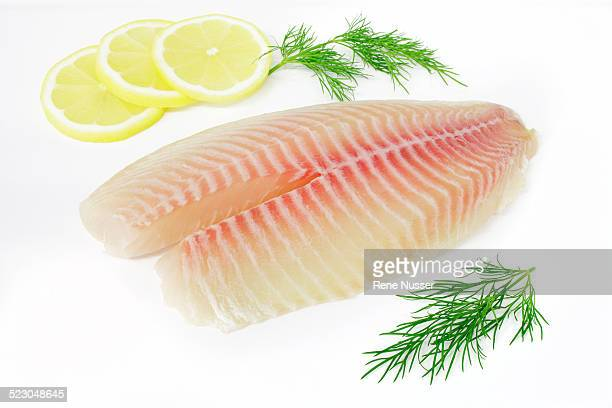 Tilapia fillets on plate with lemon and dill