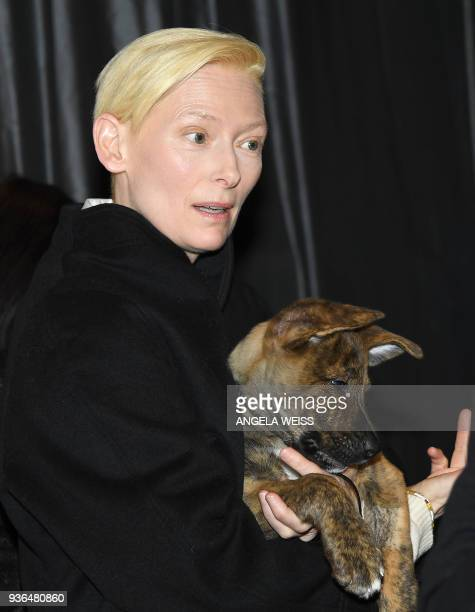 Tilda Swinton attends the paw prints special screening of 'Isle of Dogs' at IFC CENTER on March 21 2018 in New York / AFP PHOTO / ANGELA WEISS