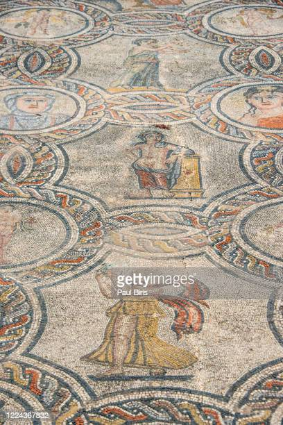 tiled floor mosaic, roman ruin at volubilis, morocco - volubilis fotografías e imágenes de stock