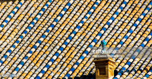 tiled roof at plaza de españa - highlywood stock photos and pictures