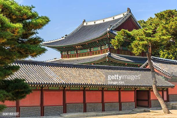 Tiled roof of Changdeokgung Palace with pine trees. Seoul, 2013.