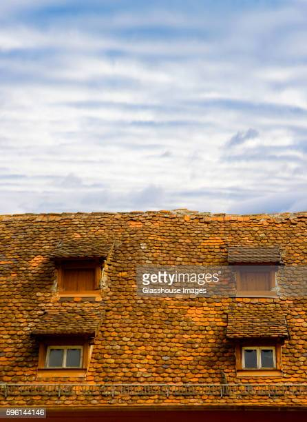 Tiled Roof with Four Dormer Windows