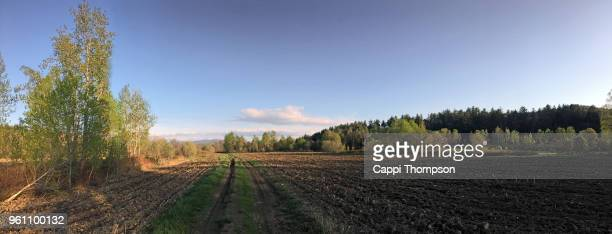 tilled farm land in milan, new hampshire usa during may 2018 - loam stock photos and pictures