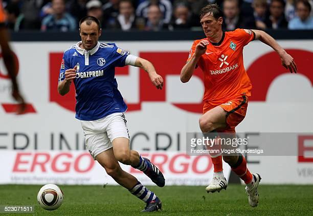 Tim Borowski von Werder in aktion mit Heiko Westermann von Schalke waehrend des Bundesliga Spiels zwischen FC Schalke 04 und Werder Bremen in der...