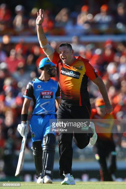 Tim Bresnan of the Scorchers celebrates the wicket of Colin Ingram of the Strikers during the Big Bash League match between the Perth Scorchers and...