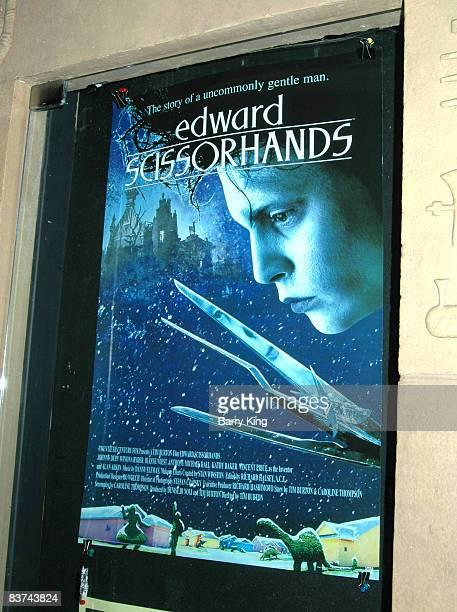 Tim Burton's Edward Scissorhands poster