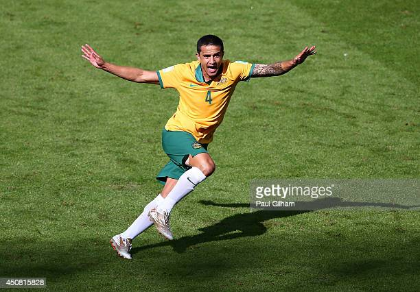 Tim Cahill of Australia celebrates after scoring his team's first goal during the 2014 FIFA World Cup Brazil Group B match between Australia and...