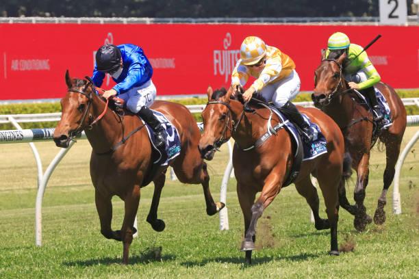 AUS: Sydney Racing: Bondi Stakes Day
