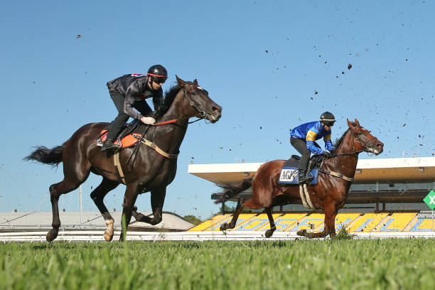 AUS: Rosehill Barrier Trials