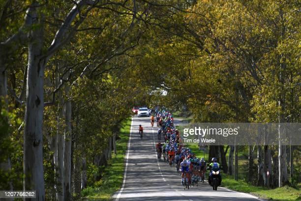 Tim Declercq of Belgium and Team Deceuninck - Quick Step / Peloton / Landscape / Forest / during the 46th Volta ao Algarve 2020, Stage 3 a 201,9Km...