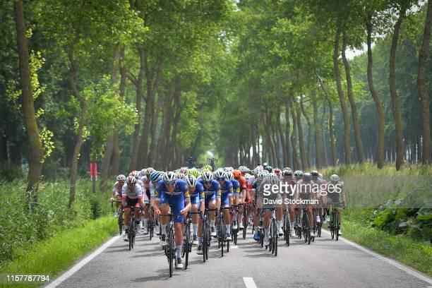 Tim Declercq of Belgium and Team Deceuninck QuickStep / Peloton / Landscape / Forest / during the 37th ElfstedenRonde Brugge 2019 a 1991km race from...