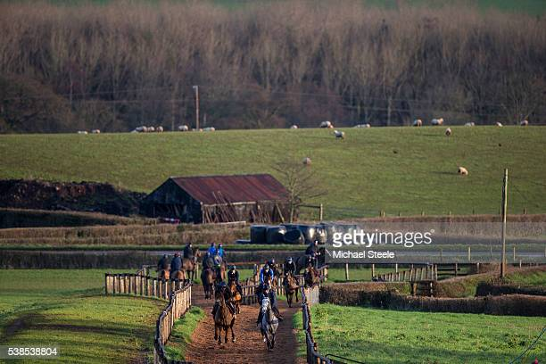 Tim Dennis riding Champagne West and Lisa Jackson riding Brother Tedd lead the way on the woodchip gallop at Sandhill Racing Stables on January 5...