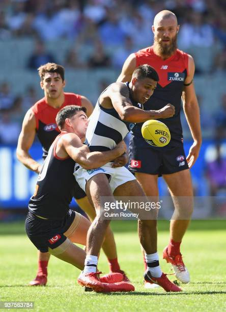 Tim Kelly of the Cats handballs whilst being tackled by Corey Maynard of the Demons during the round one AFL match between the Melbourne Demons and...