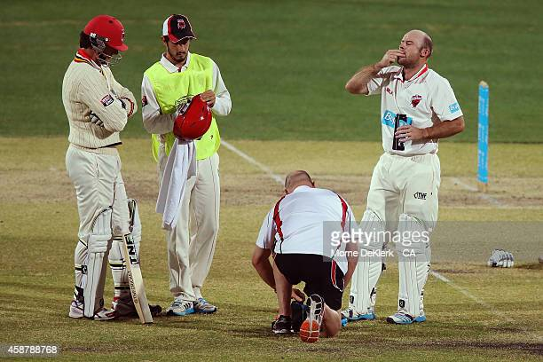 Tim Ludeman of the SA Redbacks receives treatment after getting hit in the helmet by Mitchell Starc of the NSW Blues during day four of the Sheffield...