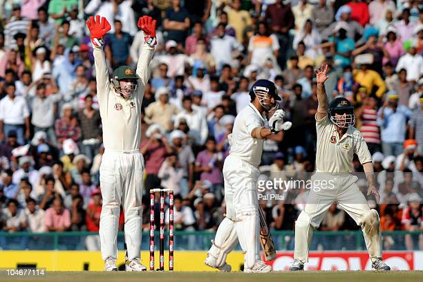 Tim Paine and Simon Katich of Australia appeal successfully for the wicket of Sachin Tendulkar of India during day three of the First Test match...