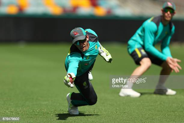 Tim Paine dives for a catch during an Australia training session at The Gabba on November 20 2017 in Brisbane Australia