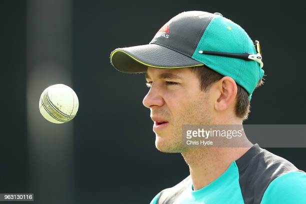 Tim Paine looks on during an Australian ODI training session at Allan Border Field on May 28 2018 in Brisbane Australia
