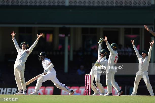 Tim Paine of Australia appeals for the wicket of Ravichandran Ashwin of India during day five of the 3rd Test match in the series between Australia...