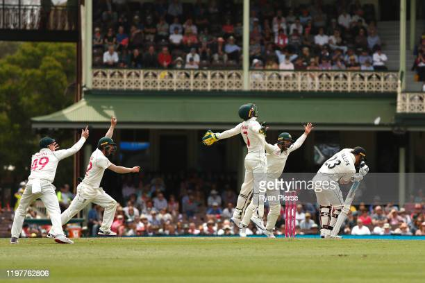 Tim Paine of Australia celebrates after taking a catch to dismiss Glenn Phillips of New Zealand off the bowling of Nathan Lyon of Australia during...
