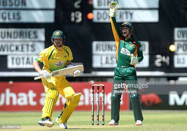 Tim Paine of Tasmania appeals to the Umpire during the Matador BBQs One Day Cup match between Tasmania and the Cricket Australia XI at Allan Border...
