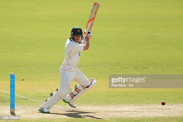 Tim Paine of Tasmania bats during day one of the Sheffield Shield match between Western Australia and Tasmania at WACA on October 31 2014 in Perth...