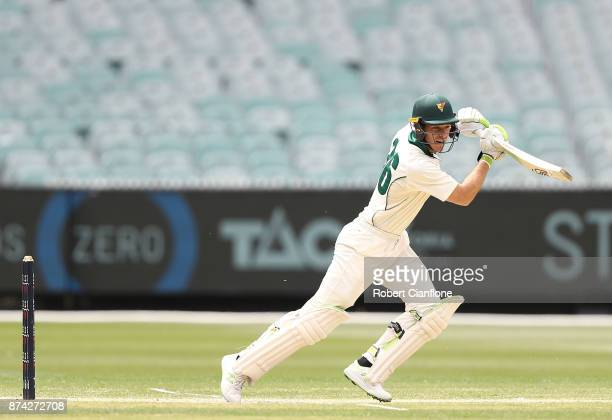 Tim Paine of Tasmania bats during day three of the Sheffield Shield match between Victoria and Tasmania at Melbourne Cricket Ground on November 15...