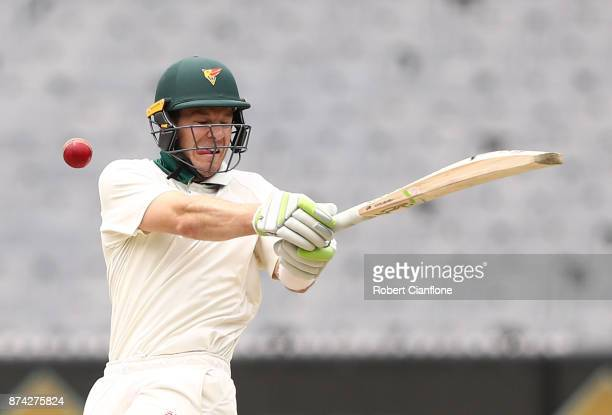 Tim Paine of Tasmania is struck by a delivery from Chris Tremain of Victoria during day three of the Sheffield Shield match between Victoria and...