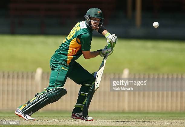 Tim Paine of the Tigers bats during the Matador BBQs One Day Cup match between Tasmania and Western Australia at North Sydney Oval on October 15 2016...