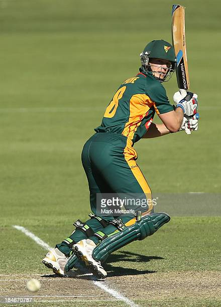 Tim Paine of the Tigers bats during the Ryobi Cup match between the Queensland Bulls and the Tasmania Tigers at Hurstville Oval on October 15 2013 in...