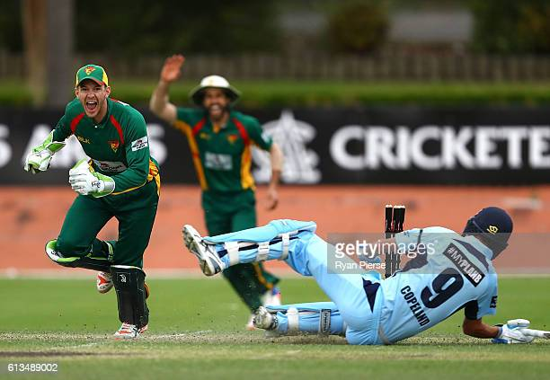 Tim Paine of the Tigers celebrates victory during the Matador BBQs One Day Cup match between New South Wales and Tasmania at Hurstville Oval on...