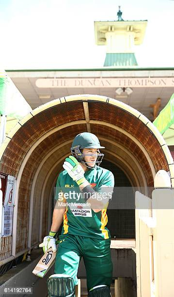 Tim Paine of the Tigers walks out to bat during the Matador BBQs One Day Cup match between Victoria and Tasmania at North Sydney Oval on October 13...